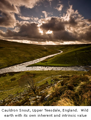 Cauldron Snout, Upper Teesdale, England.  Wild earth with its own inherent and intrinsic value